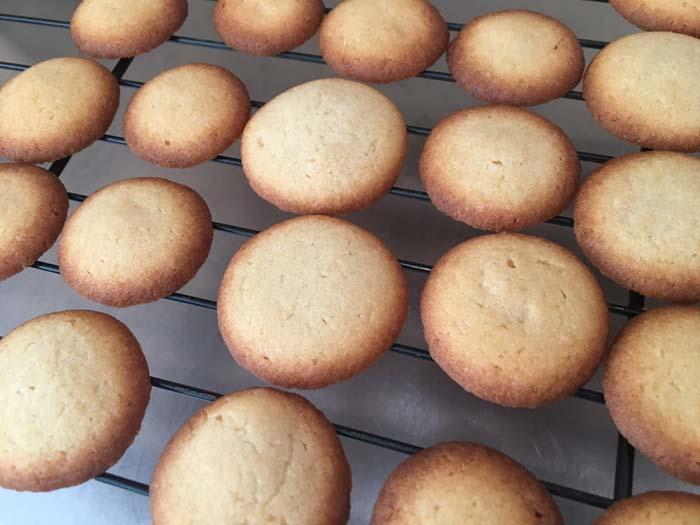 galletitas de vainilla sobre rejilla de horno